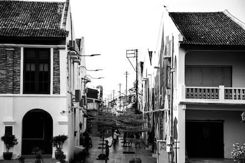 Foto d'estoc gratuïta de art de carrer, blanc i negre, graffiti, vintage