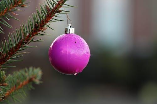 クリスマスボールの雨滴の無料の写真素材