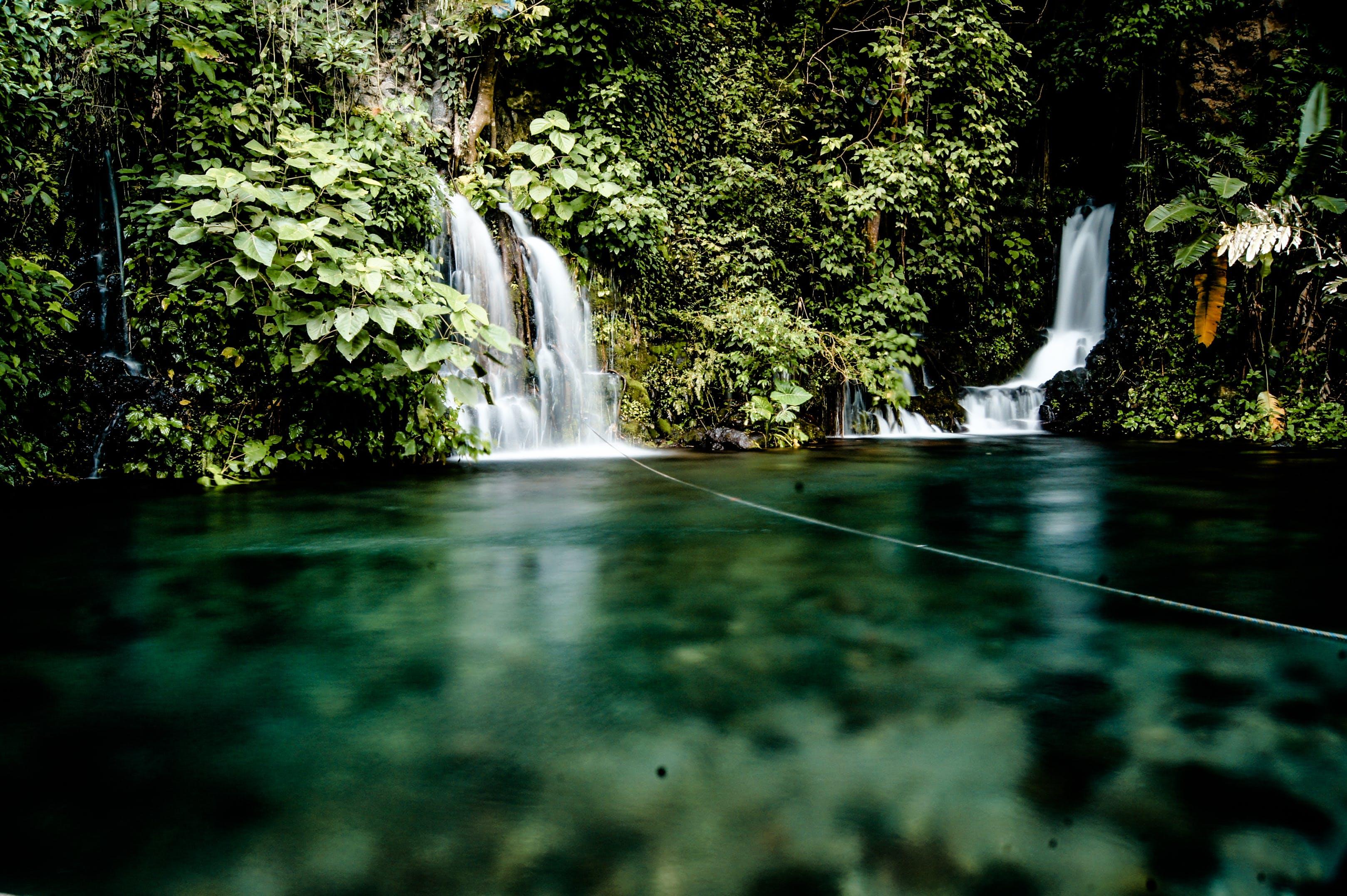 Foto d'estoc gratuïta de aigua, cascada, flux, tropical