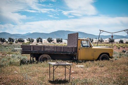 Caminhão Amarelo Em Campo