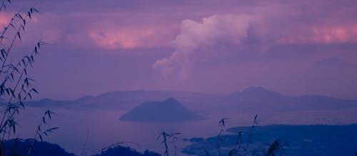 Free stock photo of light purple background, purple, purple background