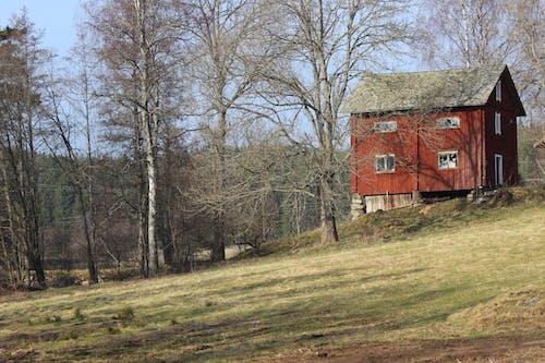 Gratis stockfoto met rode huizen, sportveld