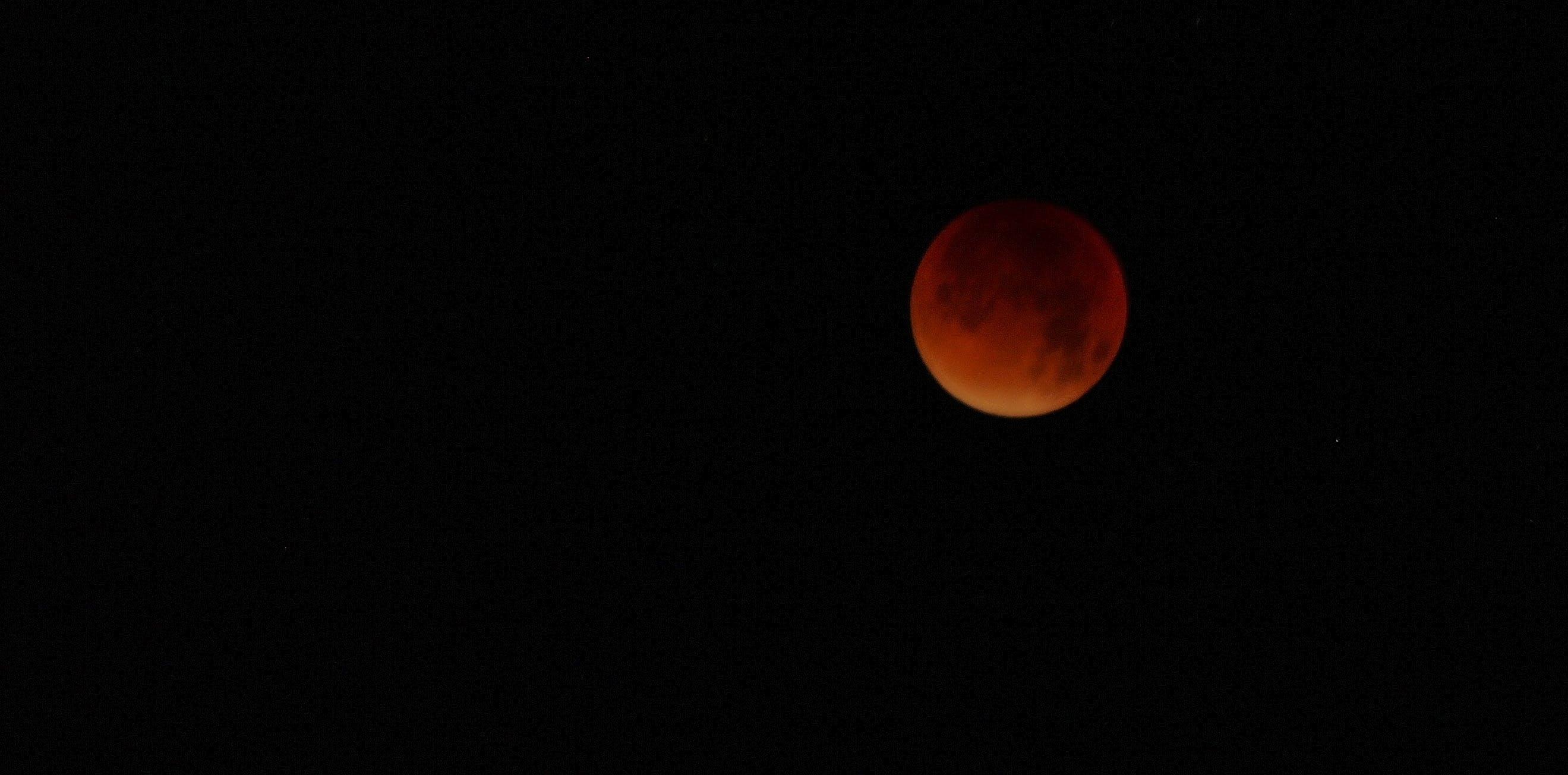 Free stock photo of bloodmoon, full moon