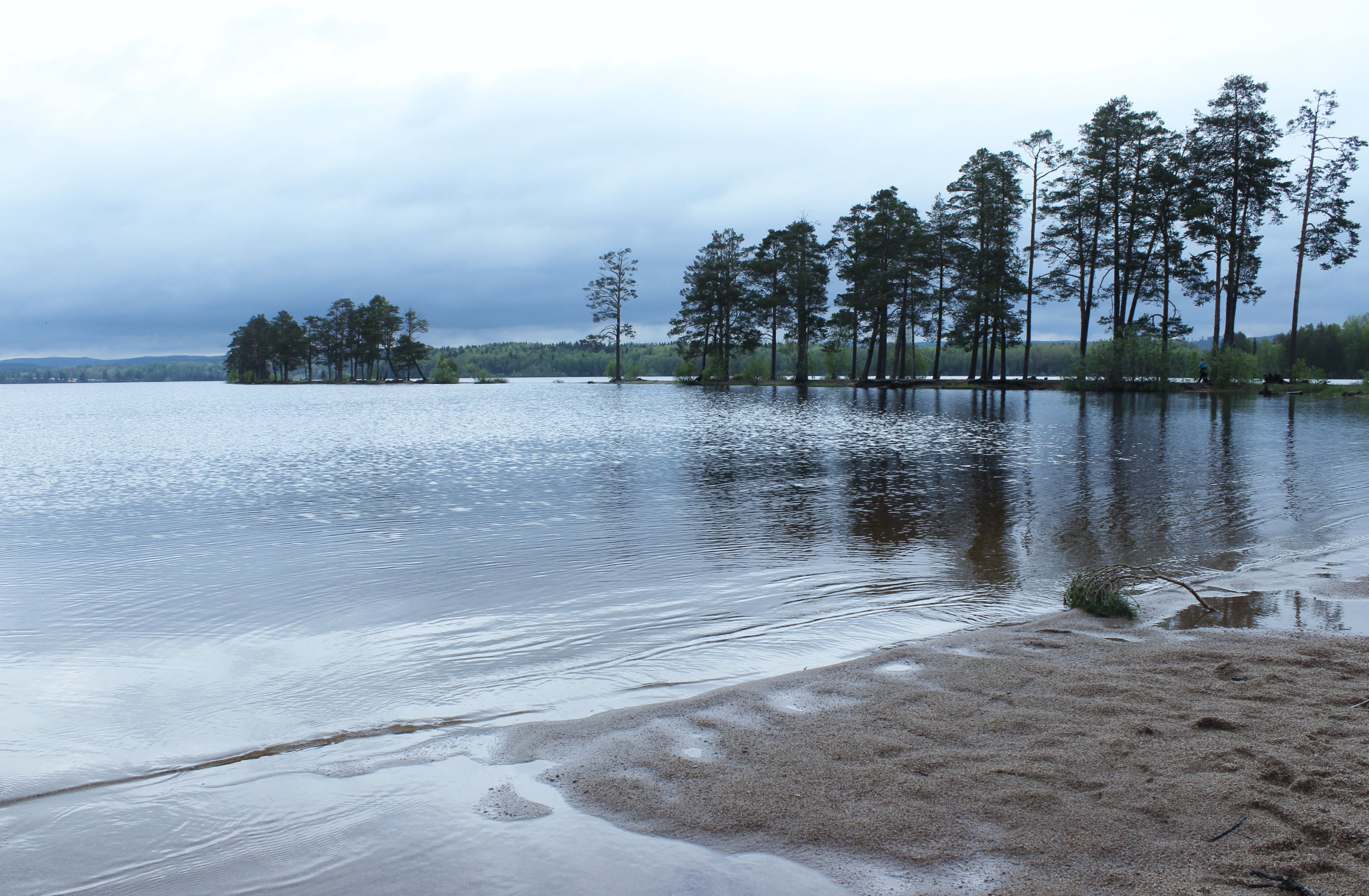 Free stock photo of beach, lake, summer