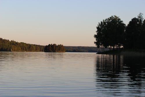 Gratis stockfoto met bomen, daglicht, h2o, hemel