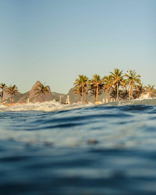 Photos gratuites de bord de mer, côte, détente