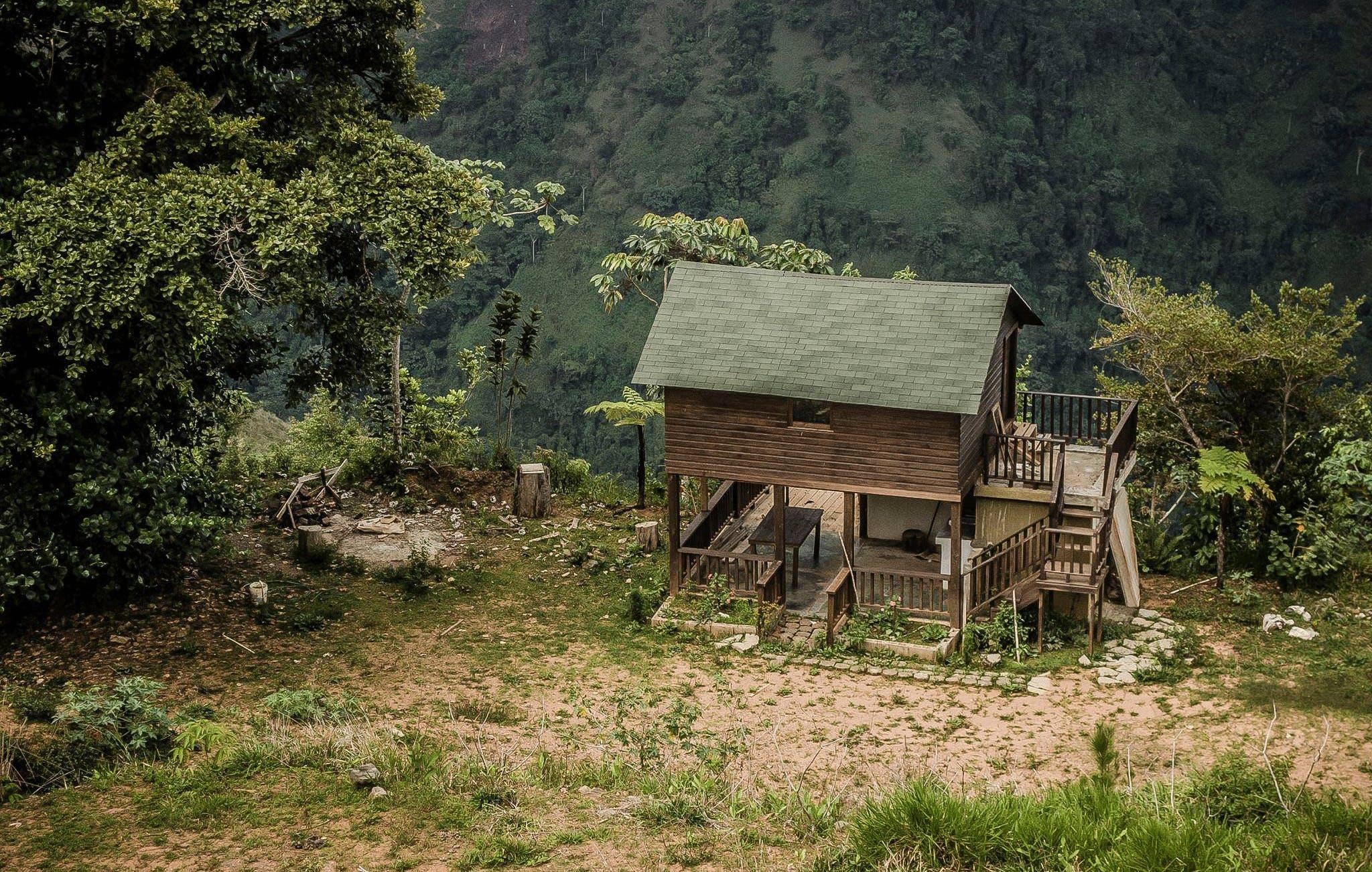 Photos gratuites de arbre, bois, cabane, en bois