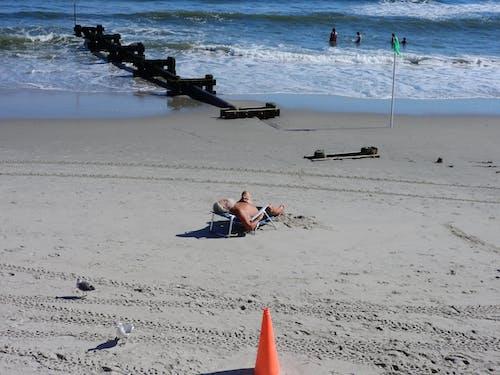 Free stock photo of beach, man, ocean