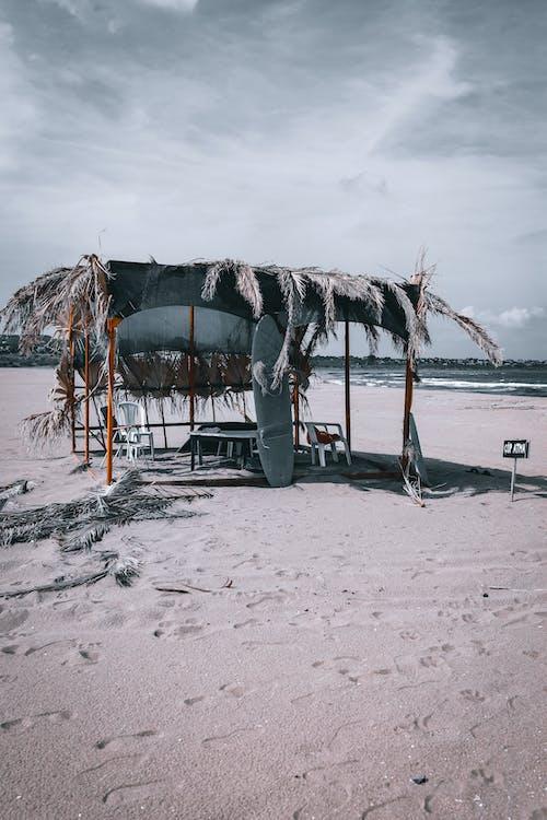 boş zaman, deniz, deniz kıyısı içeren Ücretsiz stok fotoğraf