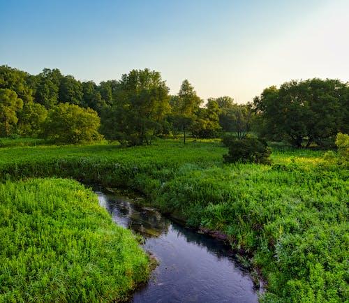 가을, 강, 경치의 무료 스톡 사진
