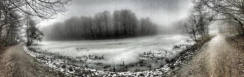 #foggy #denmark #winter #snow #ice #hdr #nature #c 的 免費圖庫相片