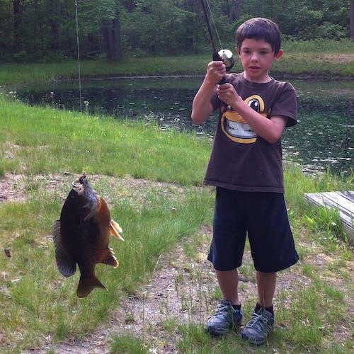 낚시, 낚시대, 소년, 연못의 무료 스톡 사진