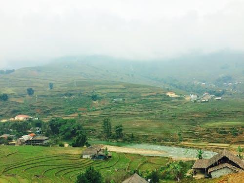 Gratis stockfoto met berg, blauwig, hoogland