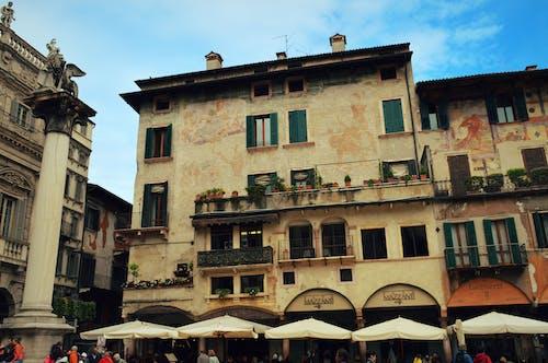 Základová fotografie zdarma na téma Benátky, Itálie, květiny, léto