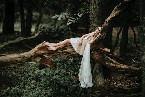 Portrait of girl lying on fallen tree in forest