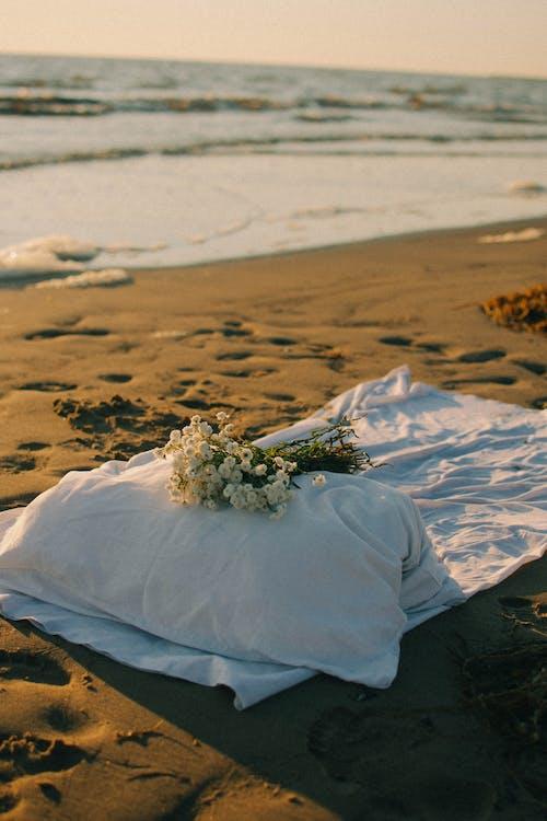 Immagine gratuita di acqua, cuscino, mazzo di fiori