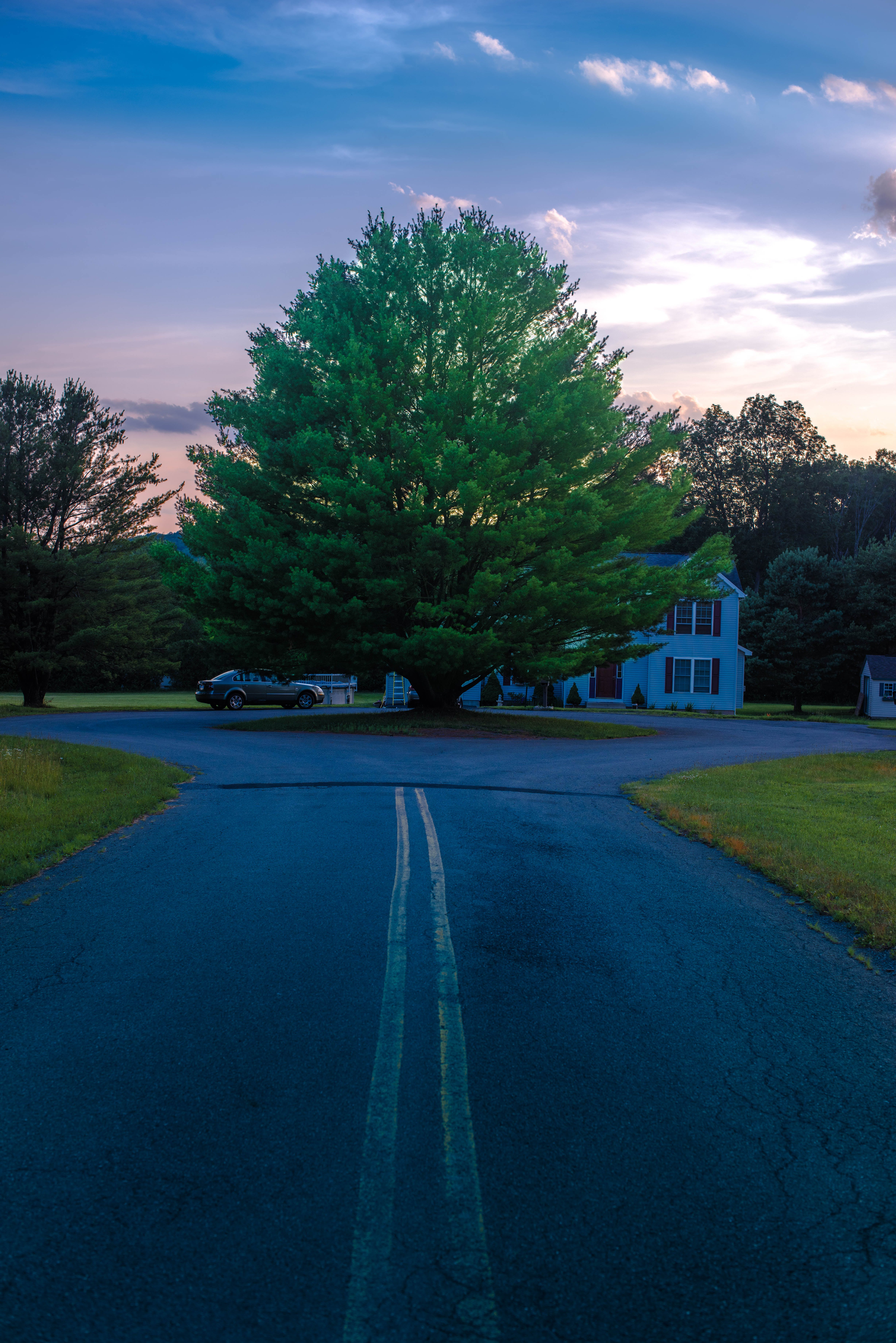 Free stock photo of lonely, road, sunset, tree