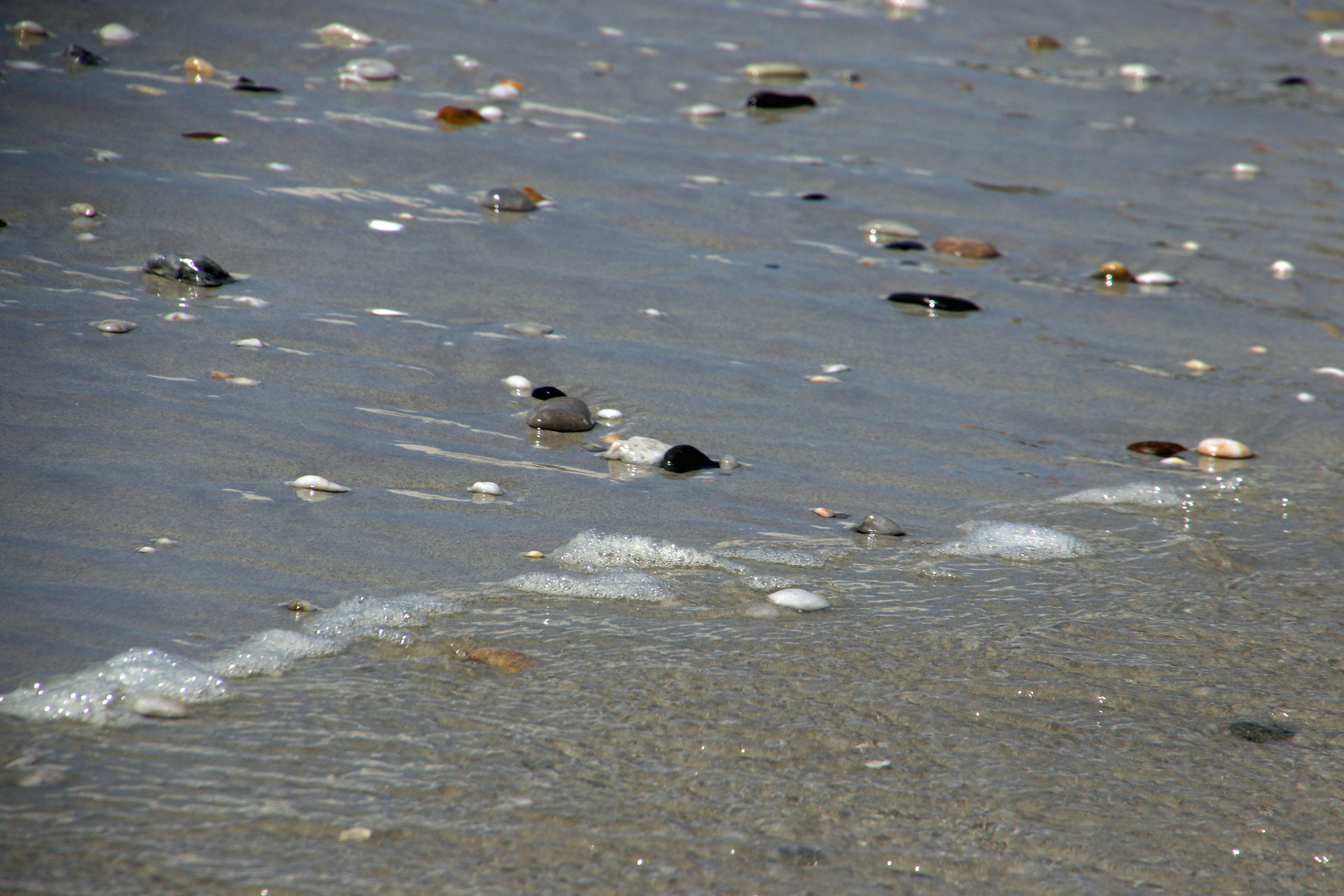 Free stock photo of nature, beach, sand, rocks