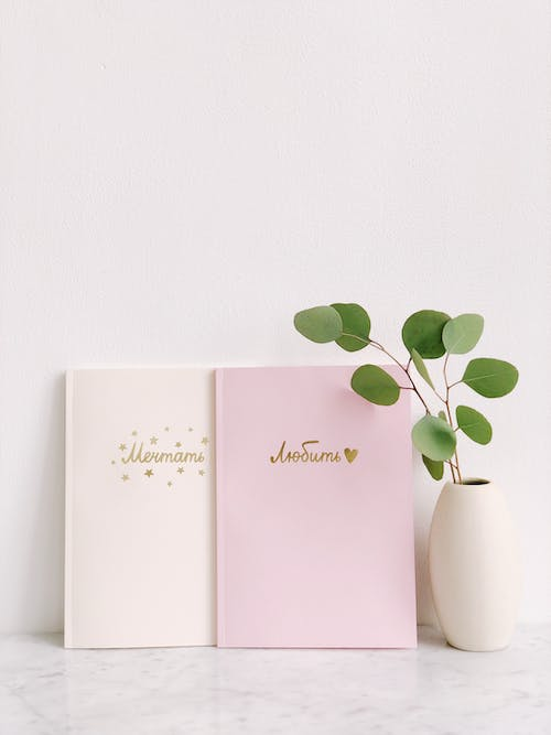 Green Leaf Plant Beside Two Pink and White Notebooks