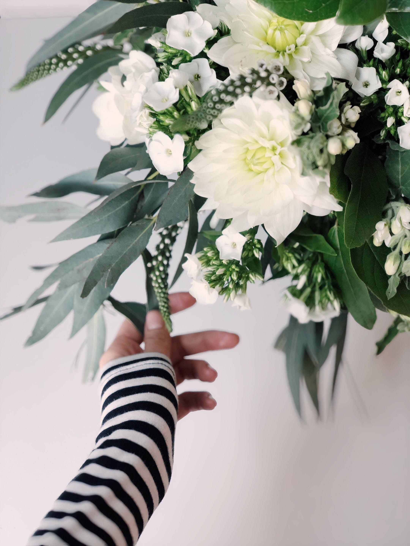 Gratis lagerfoto af blomster, blomstrende, Botanisk, buket