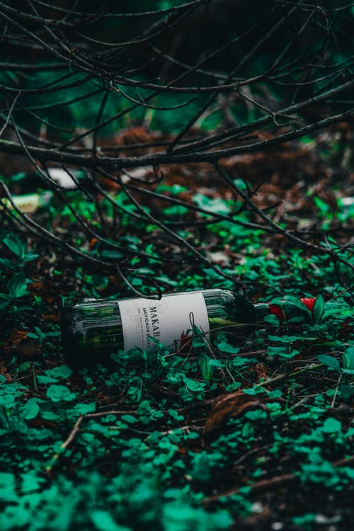 White Labeled Bottle on Brown Dried Leaves