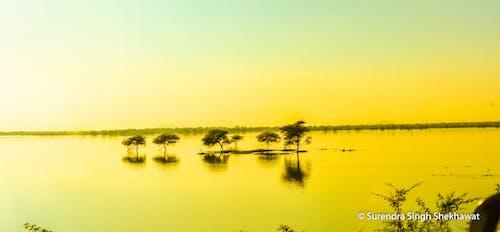 Free stock photo of artistic photo, golden lake, golden rays