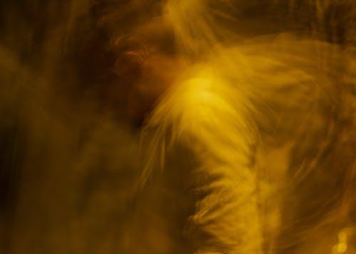 Free stock photo of abstract, dark, lowlight