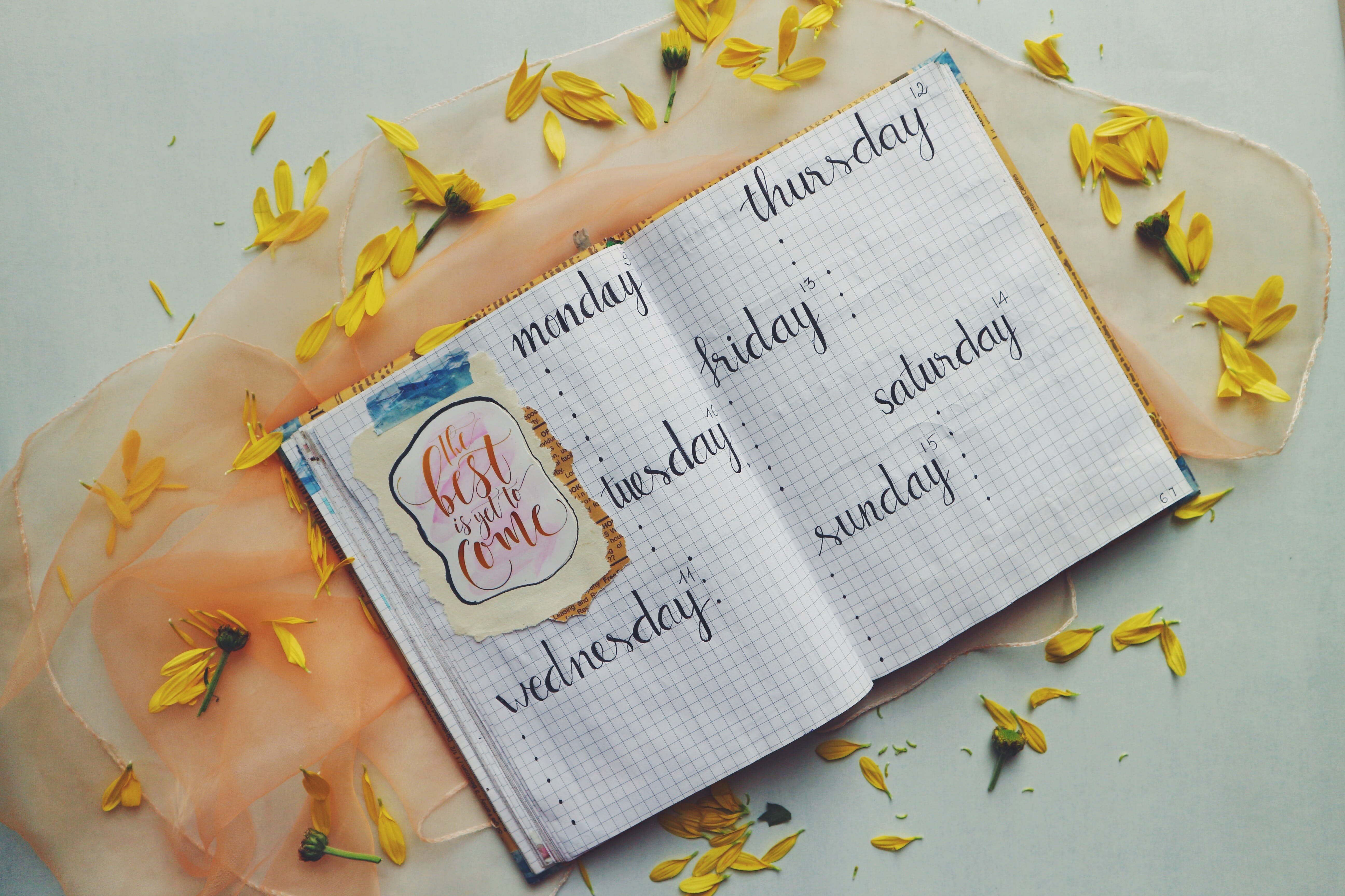 Days Printed Graphing Notebook Surrounded by Yellow Petals