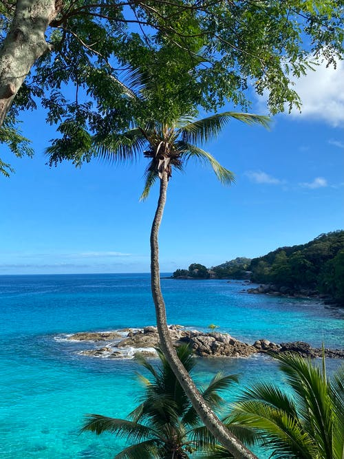 Gratis stockfoto met blauwgroen, eiland, exotisch