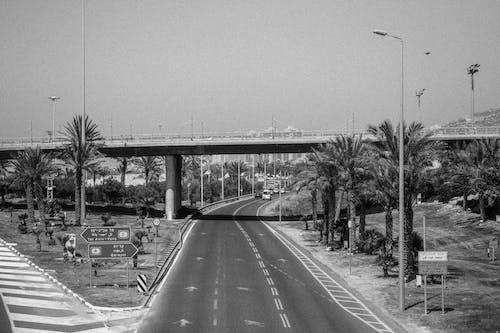 Безкоштовне стокове фото на тему «oldschool, дороги, міст, ч/б»