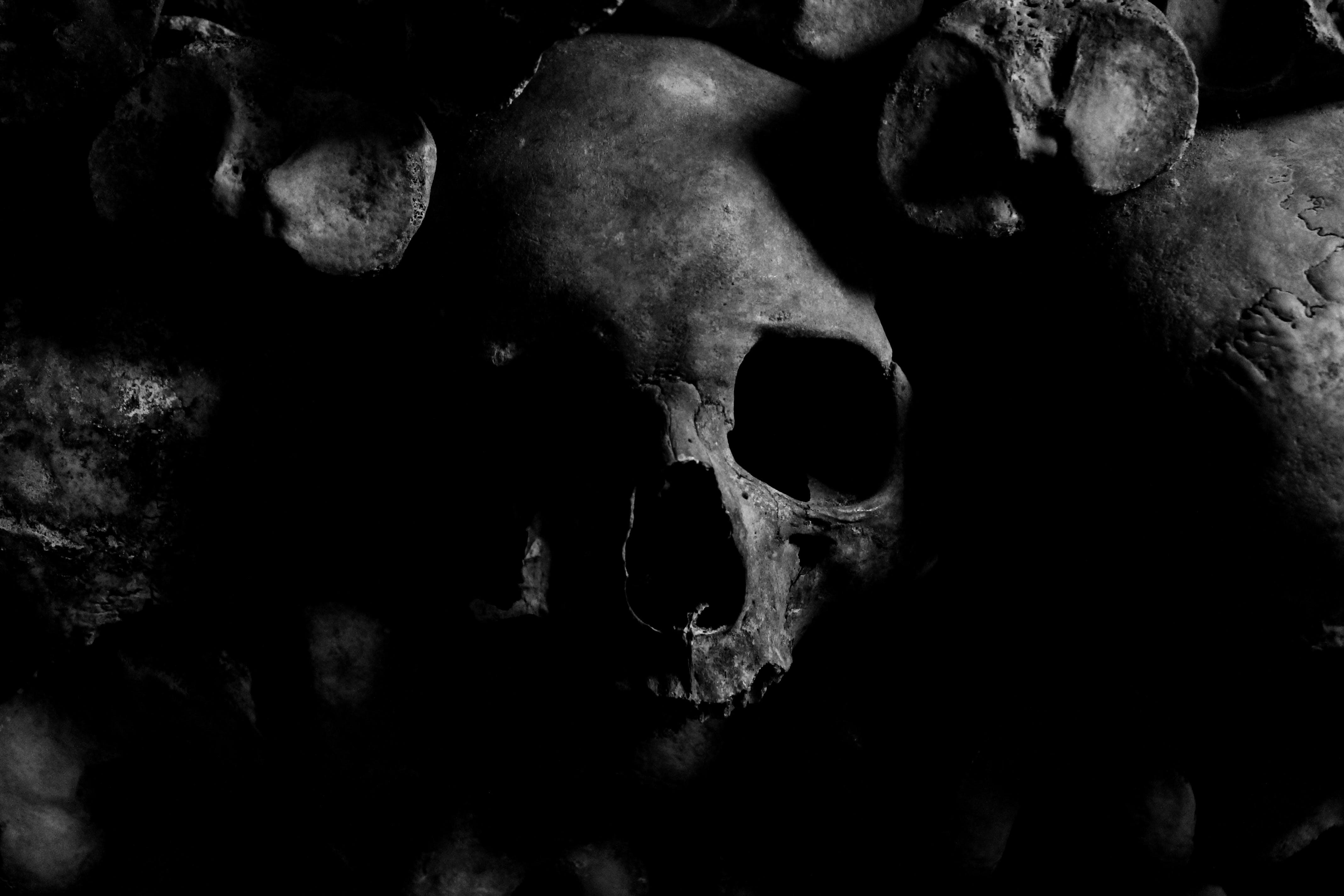 Foto stok gratis gelap, halloween, hitam & putih, horor