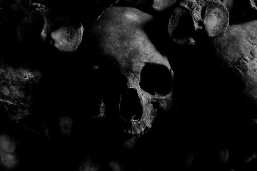 Immagine gratuita di bianco e nero, cranio, halloween, inquietante