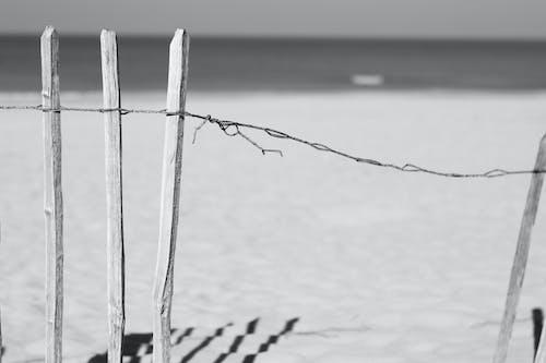 Free stock photo of beach, black and white, minimalism