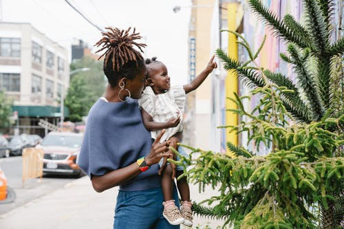 Cute little girl touching spiky tree with finger