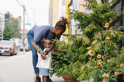 African woman is touching spruce tree with her daughter