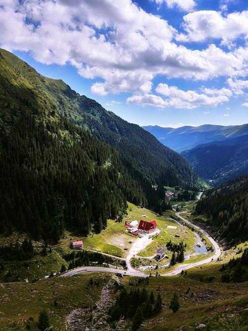 Imagine de stoc gratuită din apă, drum, lumina zilei, munte