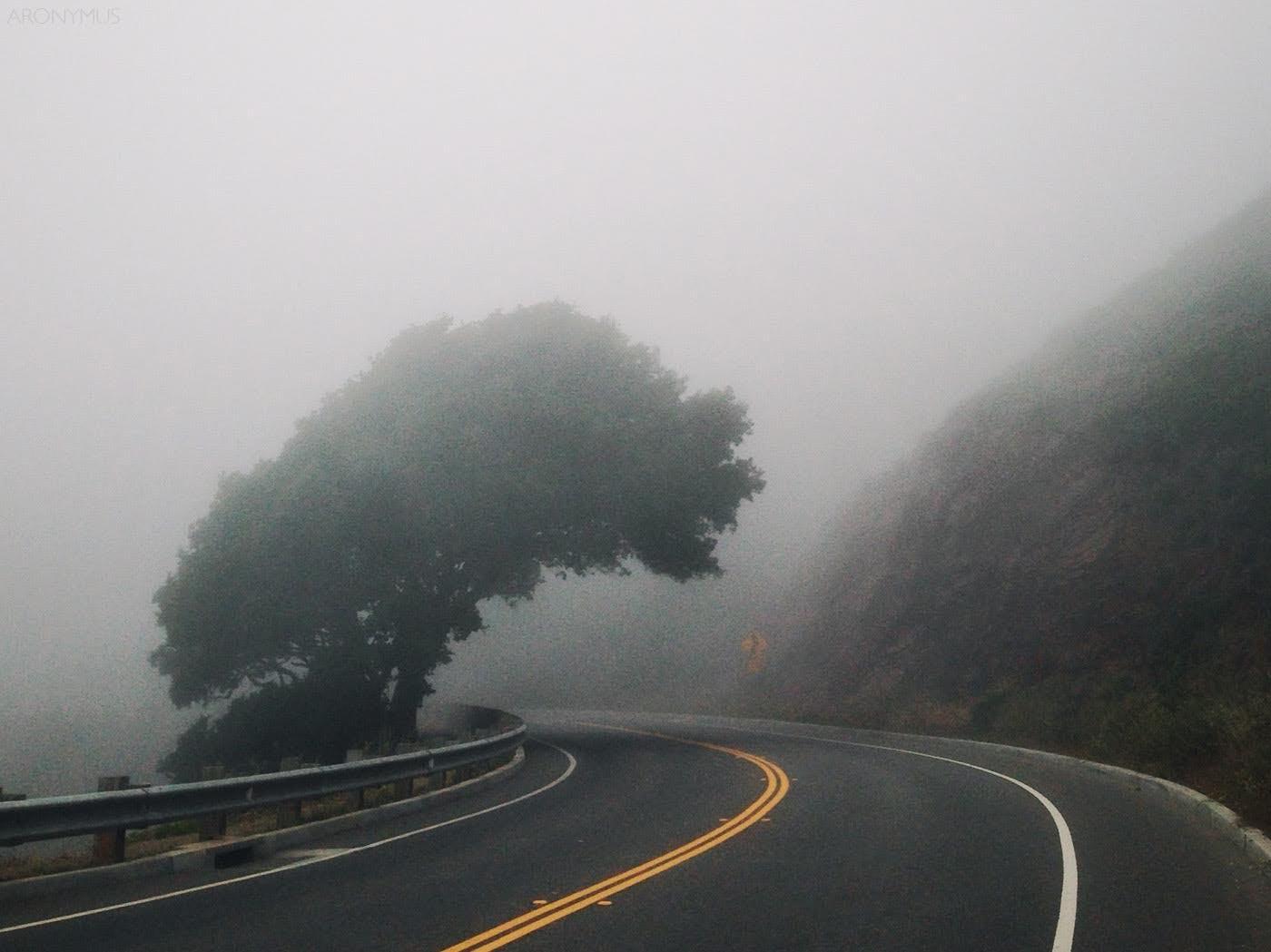 Δωρεάν στοκ φωτογραφιών με άσφαλτος, βουνό, δέντρο, δρόμος