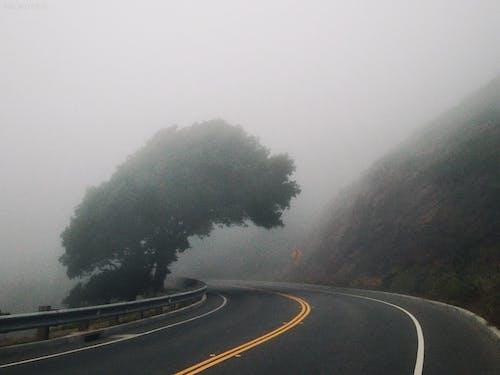アスファルト, 山, 道路, 霧が多いの無料の写真素材