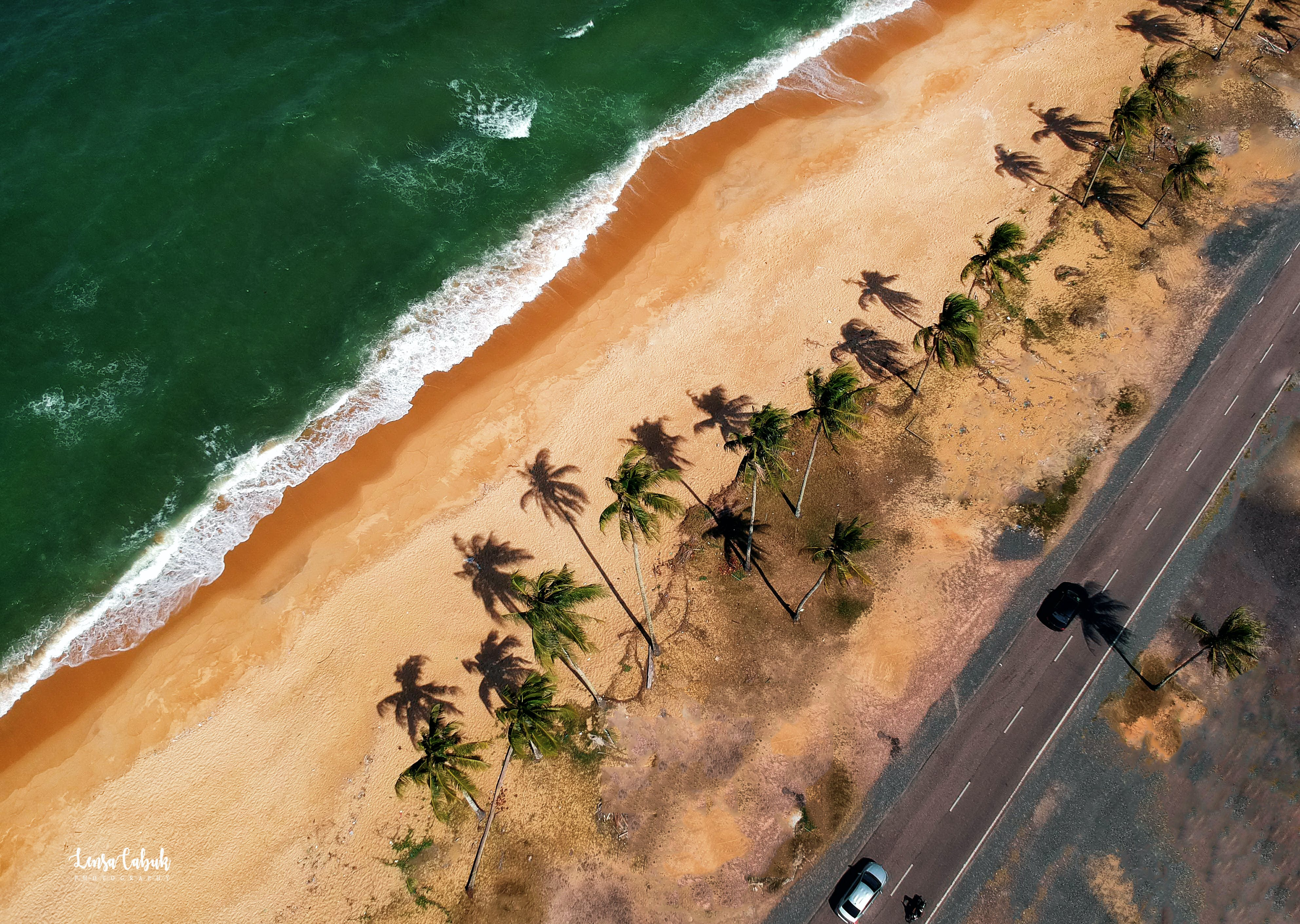 Free stock photo of beach, coconut tree, aerial view