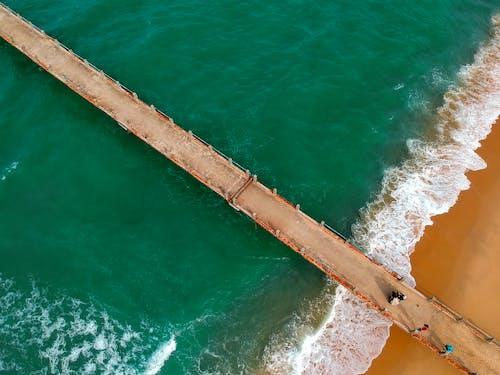 人, 招手, 水, 海 的 免费素材照片