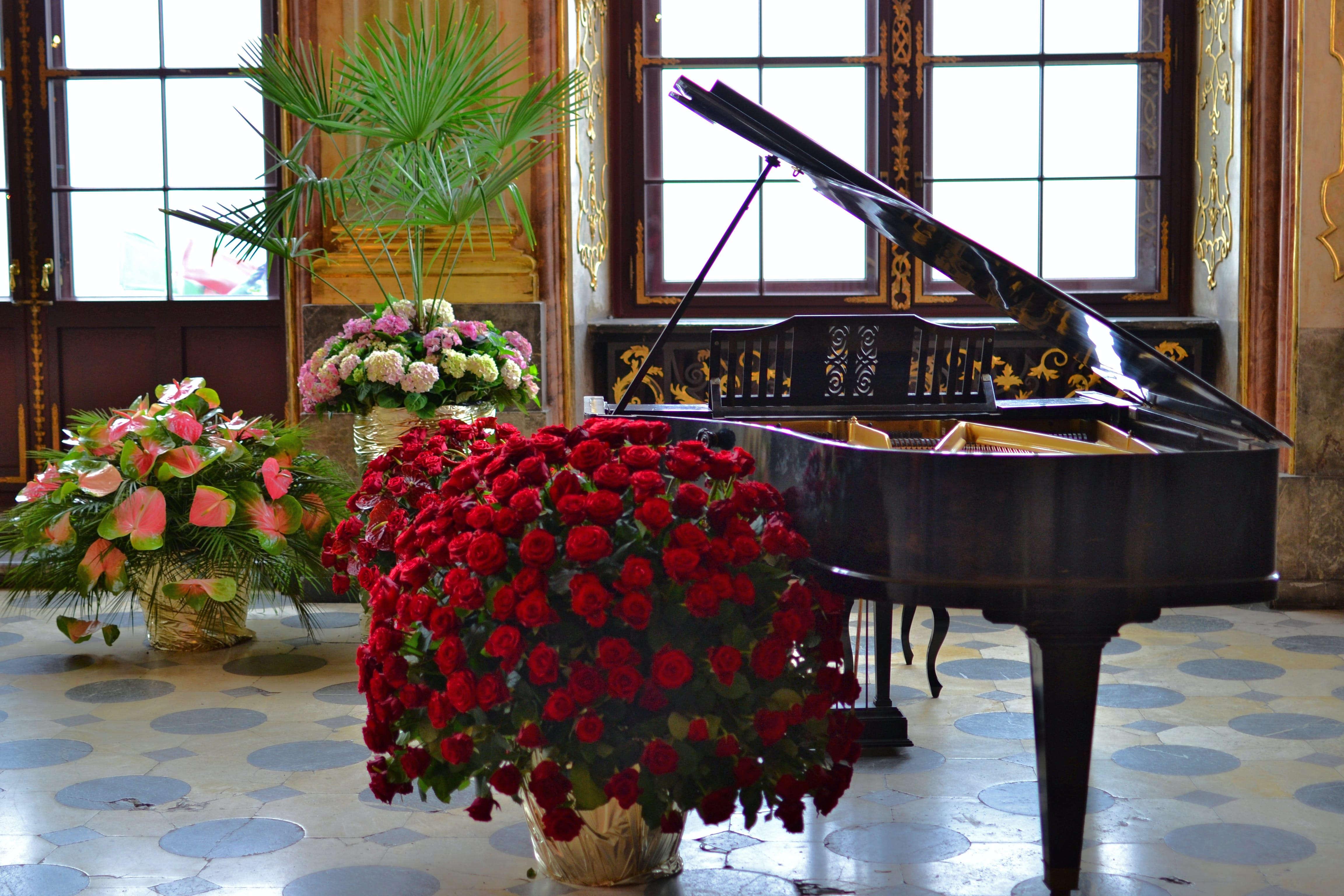 Brown Grand Piano Beside Red Flowers