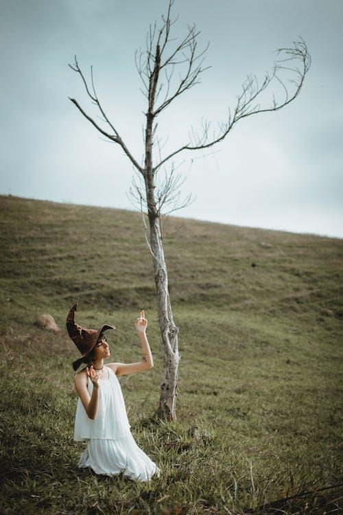 Photos gratuites de adulte, amour, arbre
