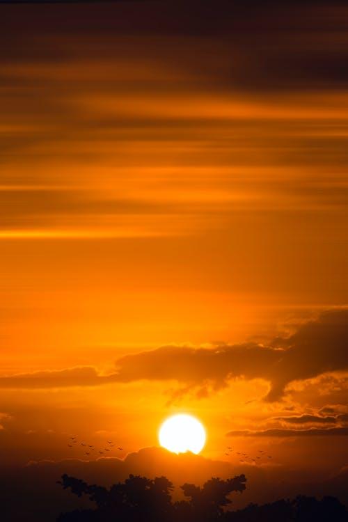 Gratis lagerfoto af aften, bagbelyst, farverig