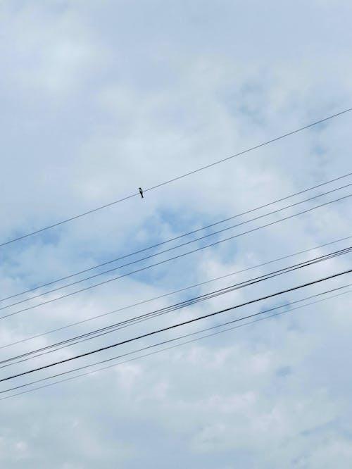 Kostenloses Stock Foto zu bau, draht, elektrizität