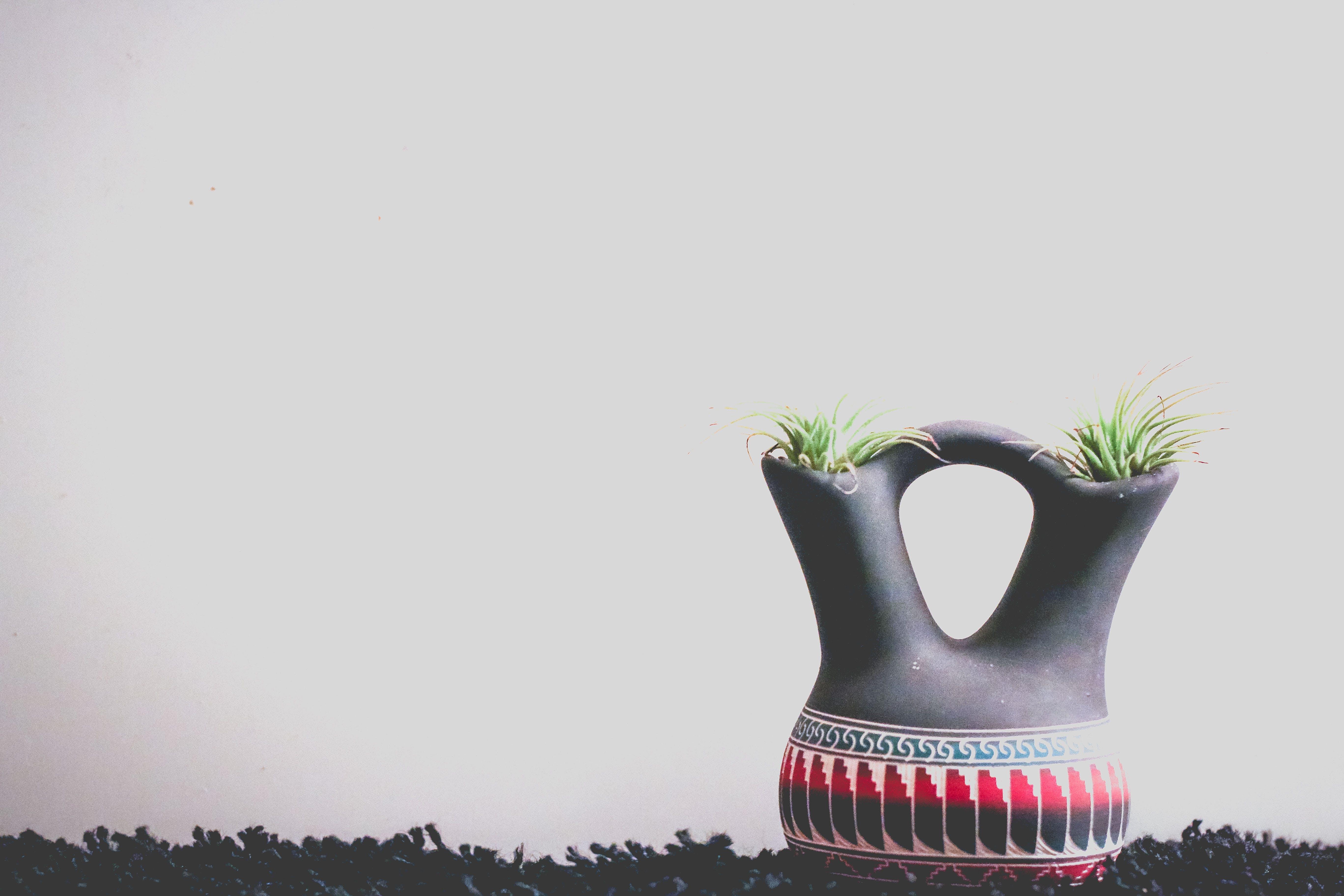 Безкоштовне стокове фото на тему «ваза, декор, домашня рослина, завод»