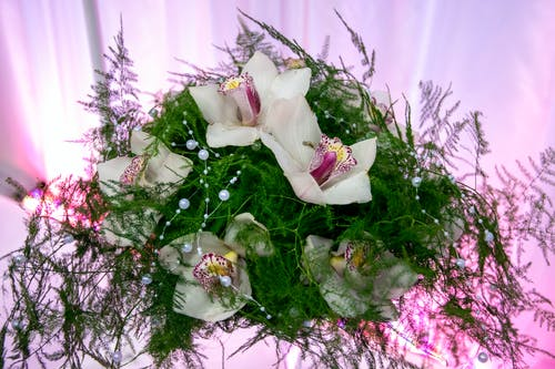 Green Asparagus Fern and White Orchid Flower Bouquet