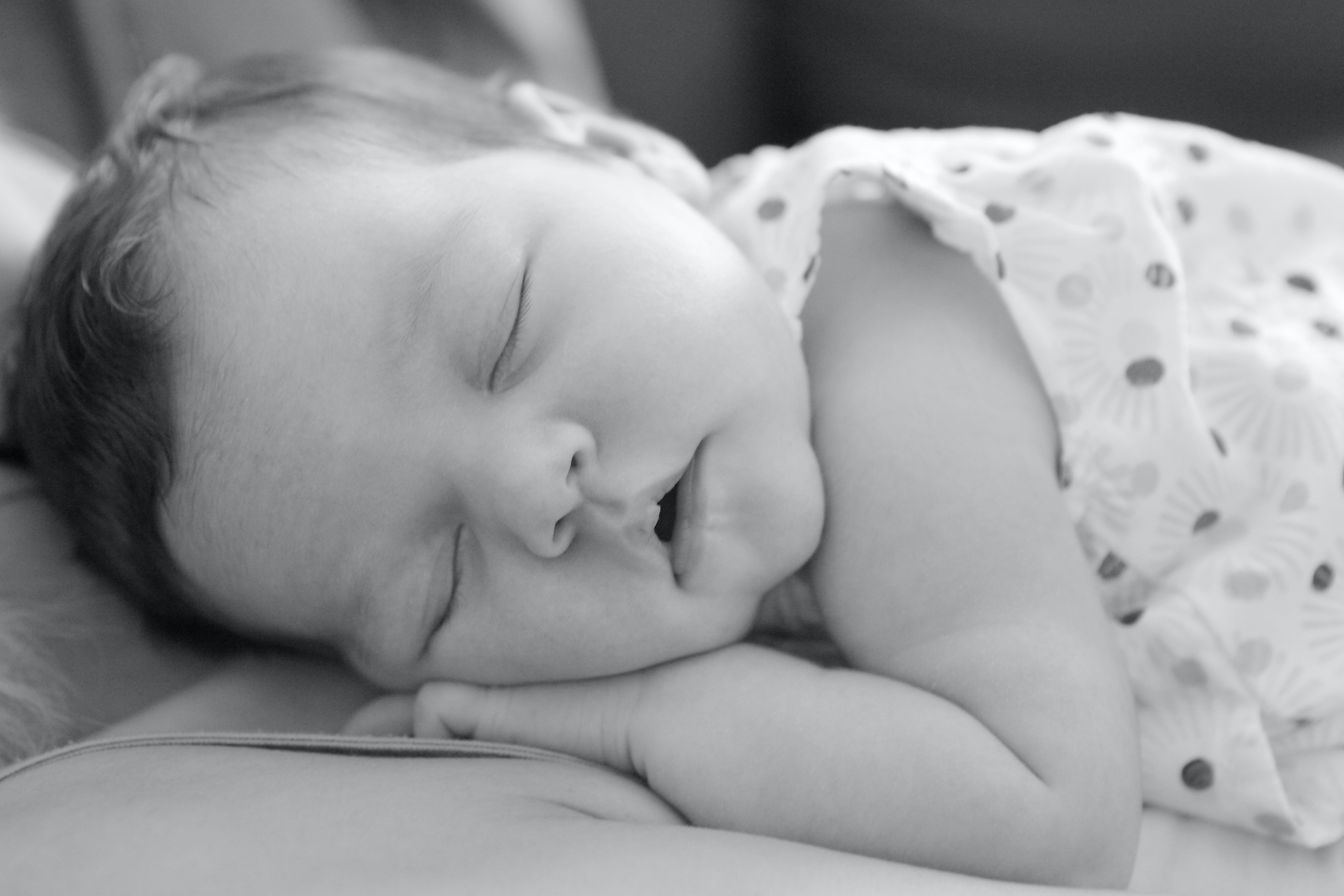 Free stock photo of amour, baby, child, cute