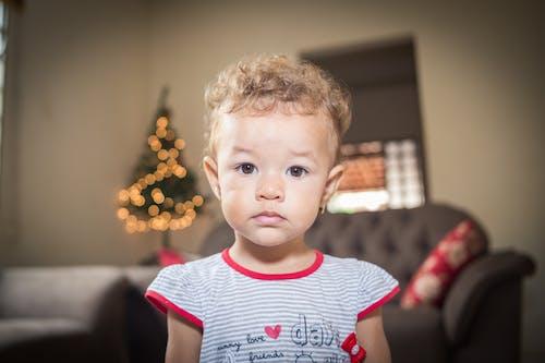 Foto d'estoc gratuïta de bufó, foto vertical, infant, interior