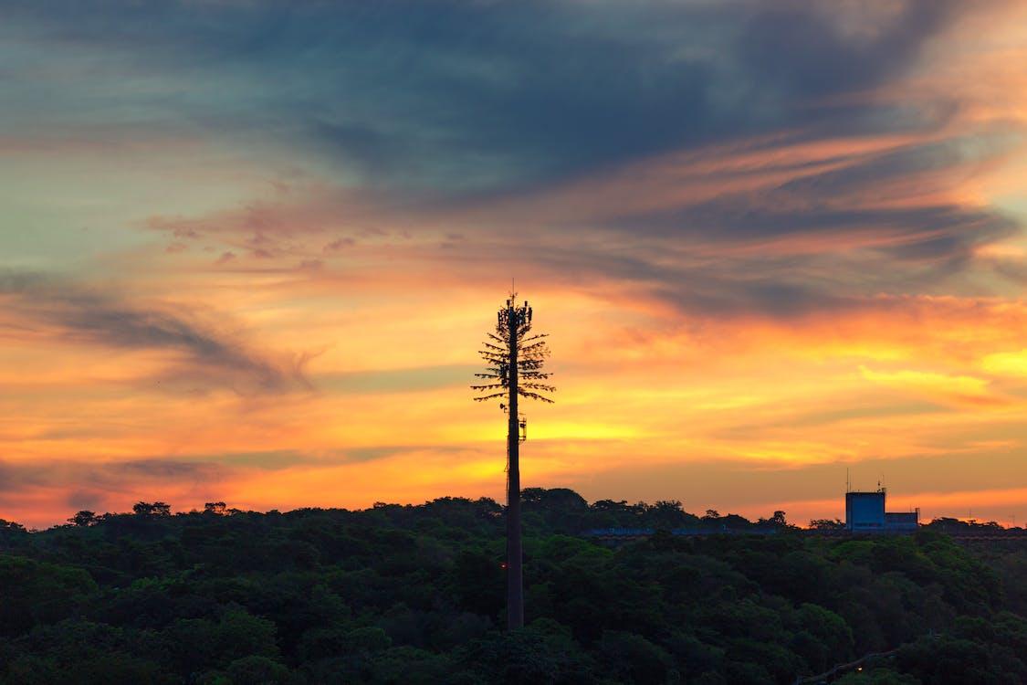 fotografía de naturaleza, puesta del sol, sol