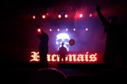 Foto d'estoc gratuïta de actuació en directe, brasil, gent, música